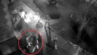 Officials release security footage of confrontation between NY fire captain, mayor
