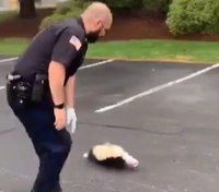 Video: Cop frees skunk with head stuck in container