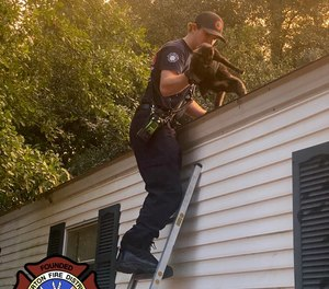 Burton Fire Department's Corey Hagan makes his first career rescue - helping a stranded cat down from a roof.