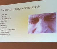 Why chronic pain is a neurodegenerative disease