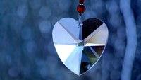 Poem: One Half of My LEO's Heart