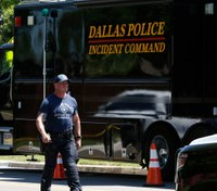 Study, Dallas police: Domestic violence incidents increased 12.5% this year