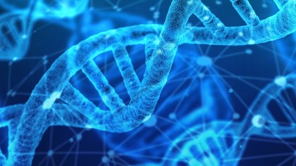 Leveraging forensic genetic genealogy to solve cold cases