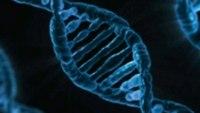 Researchers explore PTSD, genetics link
