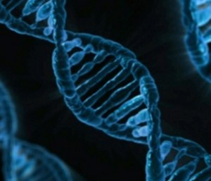 Studies estimate that people with some genetic profiles can be almost twice as likely as those without to experience PTSD. (Photo/U.S. Department of State)