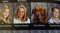 Teen's service dog gets own yearbook photo