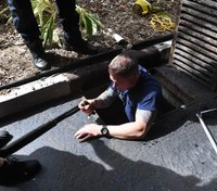 Fla. firefighters get creative to rescue duckling
