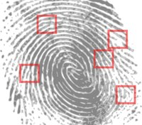 Consequences of the military failing to submit fingerprints of convicted servicemembers