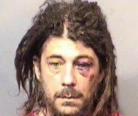 Fla. man high on flakka has sex with tree and fights with police