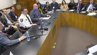 State, local LEOs ask Ga. lawmakers to fight epidemic of gang-related crime