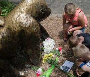 Makeshift memorial at the Cincinnati Zoo gorilla exhibit (AP image)