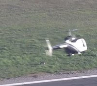Video: Coyote leads Calif. police helicopter on pursuit