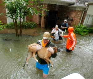 Volunteers evacuate a neighborhood inundated by floodwaters from Tropical Storm Harvey.