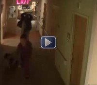 Video: Minn. man attacks nurses in hospital rampage