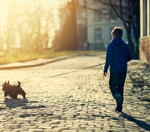 The true story of a boy and a dog and a crisis averted. (image/iStock)
