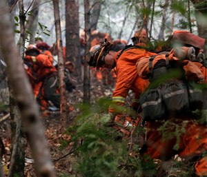 Inmate firefighters cut down trees along Highway 29 as wildfires continue to burn near Calistoga, Calif.
