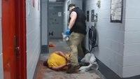 Video: Man sues over UOF incident in Tenn. jail