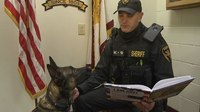 NY deputy writes children's book about his K-9