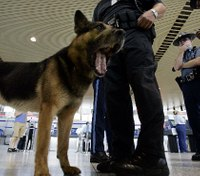 The nose knows: How electronic detection dogs are helping bust bad guys