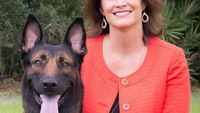 How one non-profit is standing up for K-9s