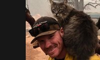 Cat refuses to leave firefighter who rescued her