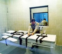 Ariz. execution renews debate over methods