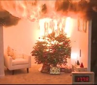 How to prevent – and extinguish – a Christmas tree fire