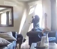 Watch: Firefighter's security camera catches break-in