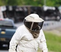 Police: Millions of bees swarm Del. highway ramp after truck overturns