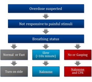 This graphic breaks down when to use naloxone. (Image courtesy of Michael Dailey)