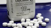 Opioids drive increase in US overdose deaths