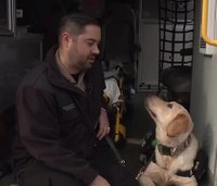Service dog joins paramedic with PTSD on ambulance