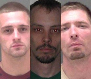 (Livingston County Sheriff's Office Image)