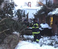 Pine tree smashes into Conn. fire station