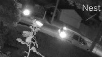 Video: Police impersonators carjack victims at gunpoint