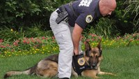 "Why you need to ""sell"" the K-9 unit to patrol"