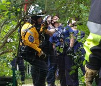Md. firefighters rescue dog from hole