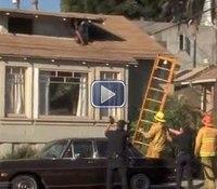 Video: LA cops rescue woman from rooftop burglar