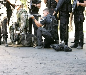 SWAT K9s can benefit from training with robots.