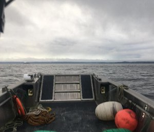 A Petersburg Volunteer Fire Department photo shows the forward deck of a boat on the search for a missing air ambulance.