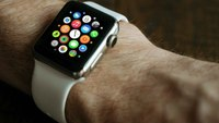 Apple Watch calls 911 after 2 hikers fall off NJ cliff