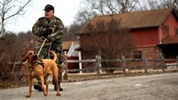 Pa. bloodhound fire dog, Sophy, dies at age 11