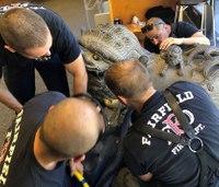 Firefighters rescue boy stuck in statue