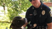 Off-duty Syracuse cop saves 2 dogs from burning home