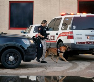 A Houston Independent School District Police K-9 unit responds to a shooting at Bellaire High School in Bellaire, Texas. (Photo/Mark Mulligan/Houston Chronicle via AP)