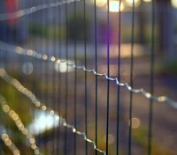 Poem: Inside the Fence