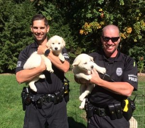 Hero Pups started placing dogs in 2012 and the rest, as they say, is history. (Courtesy photo)