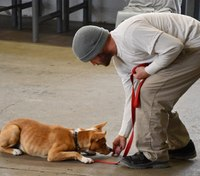 Neb. inmates train dogs with help of partner program