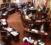 Va. Senate passes 'red flag' gun bill