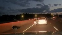Video: LEO ambushed, shot 6 times by stranded motorist